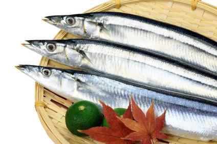 生秋刀魚.png
